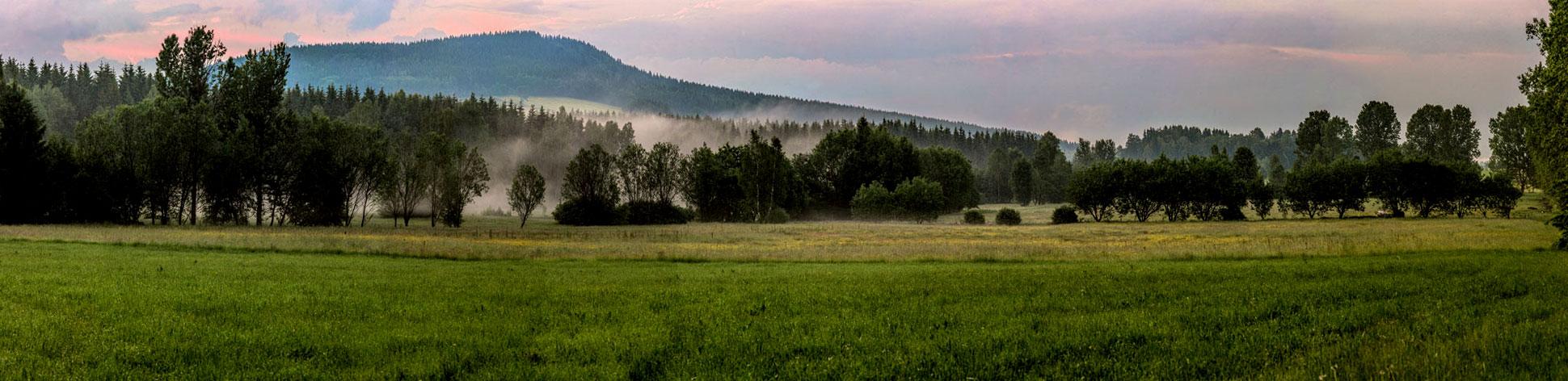 Abends nach dem Gewitter in der Scheibenberger Heide. Im Hintergrund der Scheibenberg.